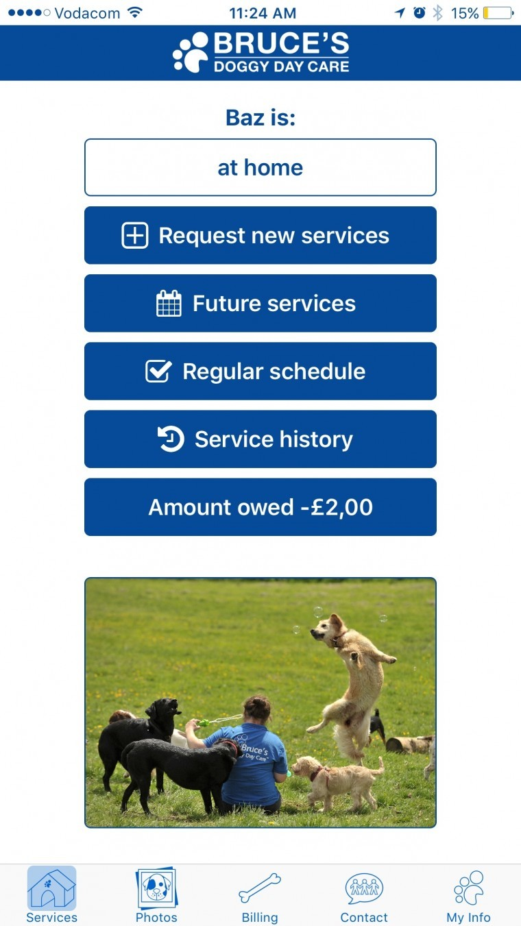 doggy days app proposal Dog days in greensboro cares about your dog whether you need dog grooming, dog daycare, or dog boarding, dog days greensboro has what you're looking for.