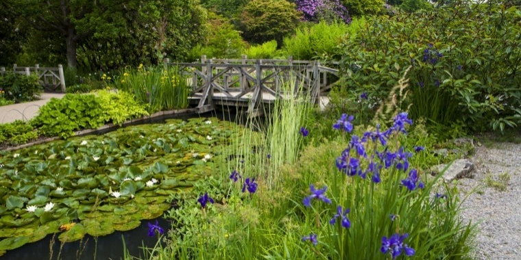 RHS Wisley £1m grant from Enterprise M3